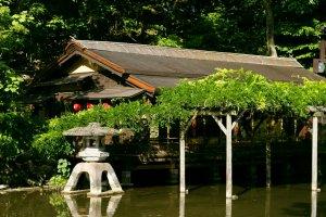 The scenic tea house