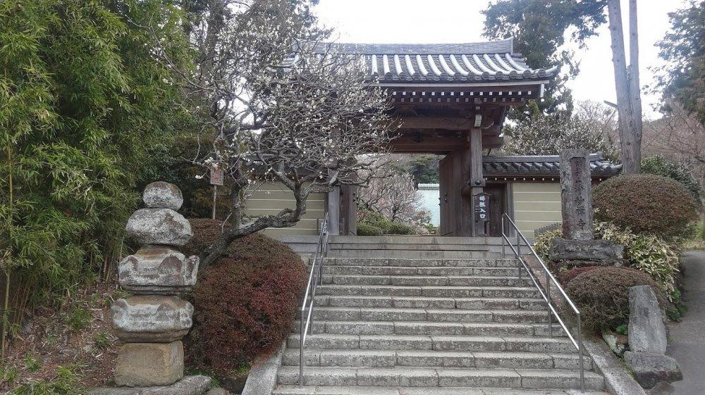 ประตูหลักที่สวยงดงามของวัดโจะเมียวจิ (Jomyoji)