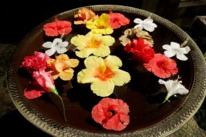 A bowl of floating hibiscus greets diners on arrival to Funakura no Sato