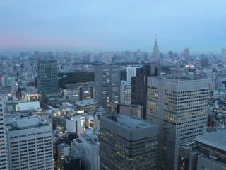 Tokyo waiting patiently for the sun to go down