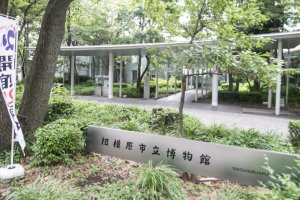 The entrance to SagamiharaCity Museum, an driveway shrouded by lushious greens.
