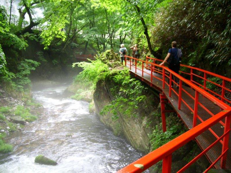 A walk along the river's edge