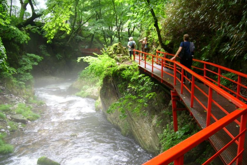 A walk along the river\'s edge