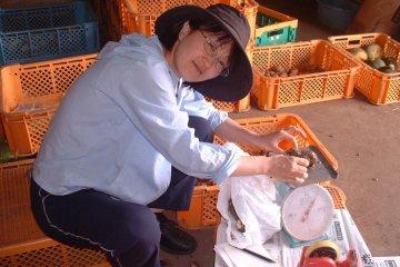 일본 전역으로 배송할 야채 포장