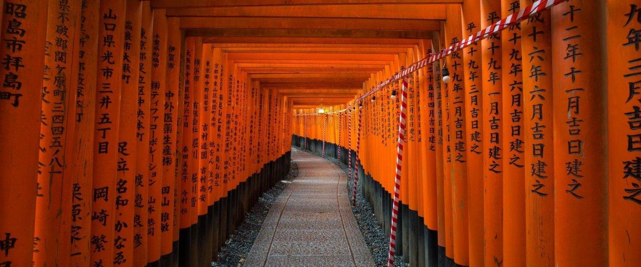 Le célèbre Fushimi Inari en soirée
