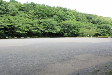 <p>The park is very spacious and makes for a great walk</p>