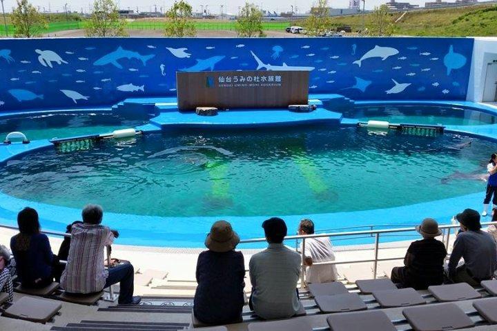 New Aquarium Opens in Sendai