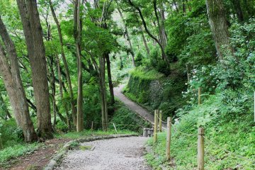 <p>It&#39;s lovely to be somewhere so green in busy Machida</p>