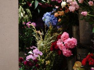Beraneka pilihan bunga yang bisa langsung di package sesuai keinginan