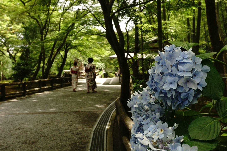 Entrance Garden, taman utama menyambut kedatangan visitor