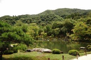 landscape taman yang menjadi favorit turis, letaknya teat di depan Hojo ( Main Hall)