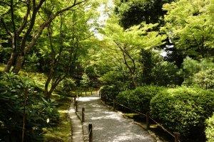 Bagian dalam Taman Sogenchi yang menjadi salah satu historic site