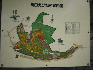 Map of the garden, showing the different areas