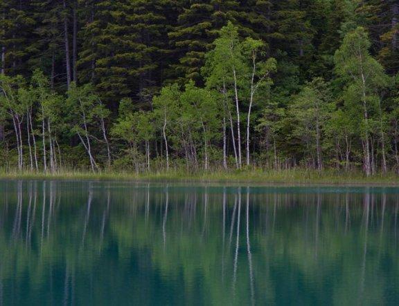 아칸 국립공원(阿寒国立公園):온네토
