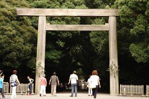 Asuta Shrine memiliki daya tarik sendiri karena tempatnya yang rindang dan sejuk. Bisa dibayangkan indahnya ketika musim gugur tiba..