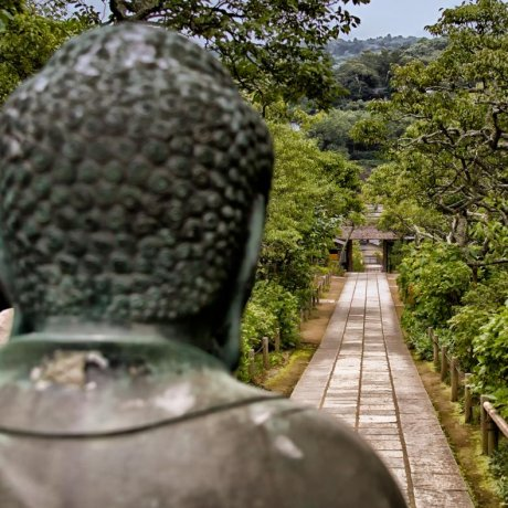 Tokei-ji วัดแห่งการหย่าร้าง