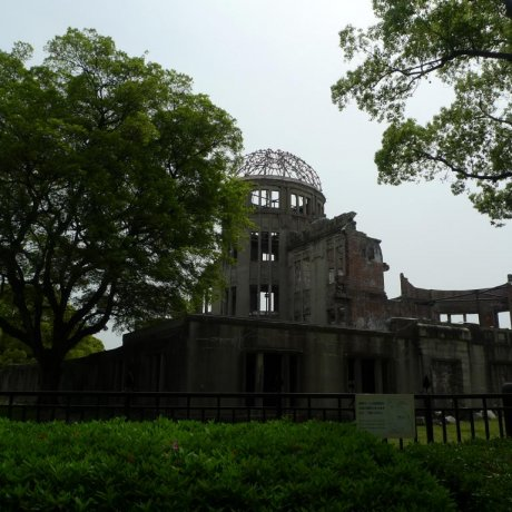 Photo Highlights: Hiroshima Flower Festival