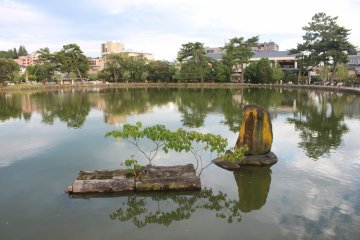 <p>Sarusawa Pond - with benches and grass around the pond it is the perfect place for a short break. The NARA Visitor Center is located just around the corner!&nbsp;</p>