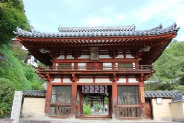 <p>The Neomon (Guard Deity) Gate</p>