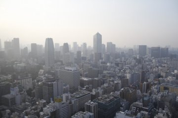 <p>The Skyline of Tokyo from The World Trade Center.&nbsp;</p>