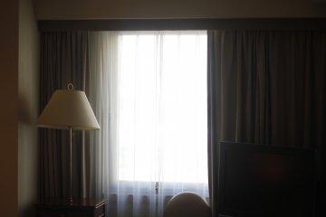 <p>The window.</p>