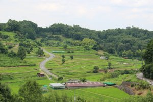 Asuka's Tanada (terraced rice fields) offer countless opportunity to take the perfect post card photo or stroll or ride leisurely through the countryside