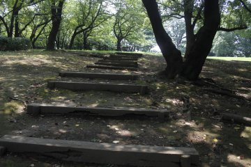 <p>Steps walking up to an large green area.&nbsp;</p>