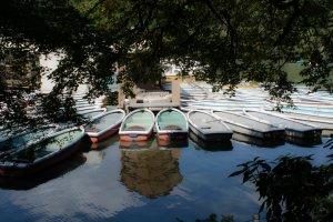 호수 위의 배