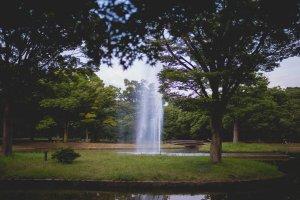 Yoyogi Park fountain