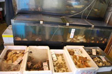 <p>Fish in tanks; many restaurants keep fish alive in aquariums until they are ordered for dinner</p>
