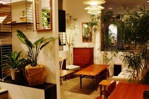 La vitrine pour la vente de meubles