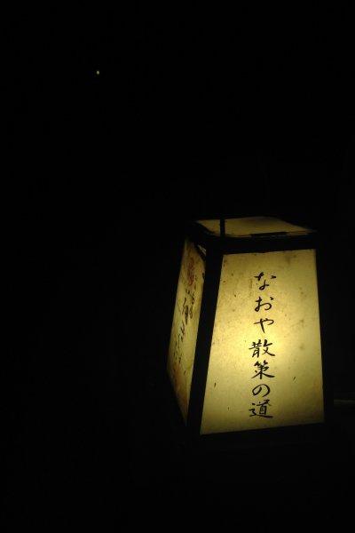 แสงจากเจ้าหิ่งห้อยตัวน้อยที่กระพริบแข่งกับแสงไฟอันแรงจ้าที่ Kinosaki onsen