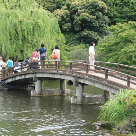 A Day at Shinjuku Gyoen