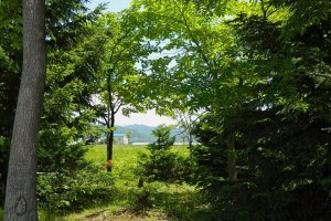 Quiet retreat: Hokkaido's natural beauty is calming and serene