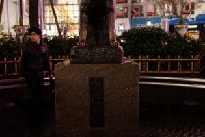 """ในที่สุดเราก็เจอกันแล้ว """"ฮาจิโกะ"""" เจ้าคงเป็นสุนัขที่ทำตามคำว่า """"นั่ง"""" ได้นานที่สุดในประวัติศาสตร์เลยนะ รู้ไหม พอลองเทียบรูปฮาจิโกะรูปปั้น กับรูปฮาจิโกะตัวจริงในเว็บวิกิพิเดียแล้วหน้าเหมือนกันมากเลย ท่าเดียวกันด้วยค่ะ"""
