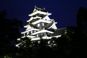 Okayama Castle Night-view