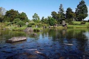 O lago de carpas, ainda fora da sombra da estátua