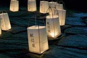 Lanternes du festival bouddhiste