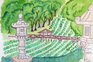 ฟาร์มวาซาบิ ไดโอะ ฟาร์มวาซาบิที่ใหญ่ที่สุดในญี่ปุ่น ฟาร์มยาวเยียดเลียบแม่น้ำดูคล้ายนาข้าว