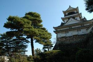Under Kochi Castle