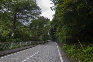 الطريق الى جبل ميتاكا