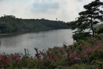 <p>While you are there you can also roam around the numerous gardens.&nbsp;</p>