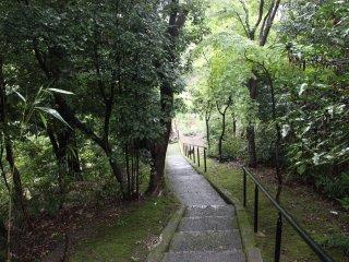 Лестница, ведущая к неизвестному ручью