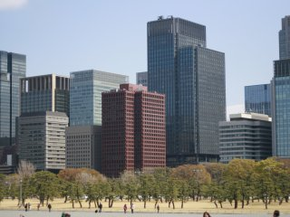 The view of lego-like buildings from Kokyo Gaien, a large park in front of the palace