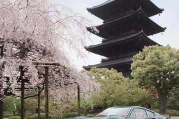 <p>RALLY NIPPON 2015 starts at the Toji Temple in Kyoto!</p>