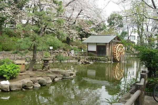 Shoto Park