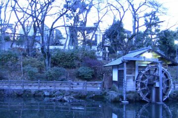 Dusk greets Shoto Park