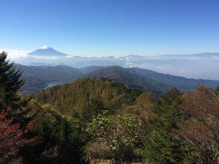 层林尽染的秋色衬出了富士山的美