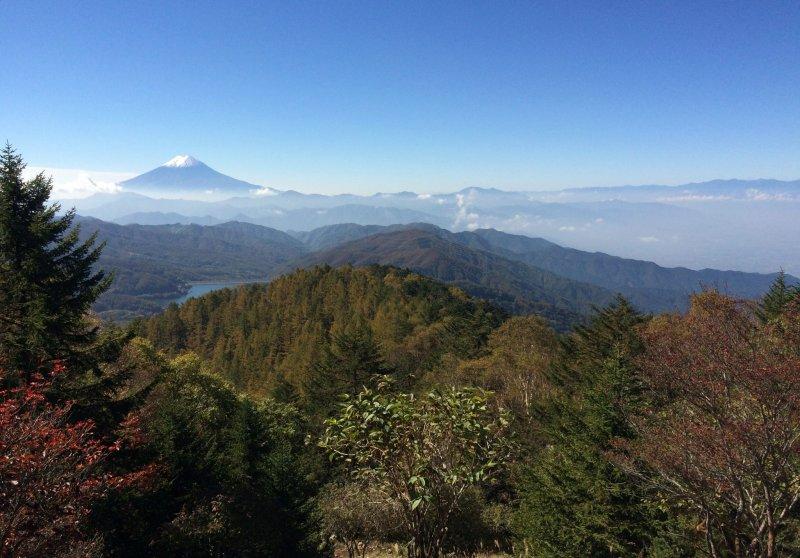 <p>层林尽染的秋色衬出了富士山的美</p>
