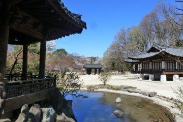 <p>Mitsuike Park</p>